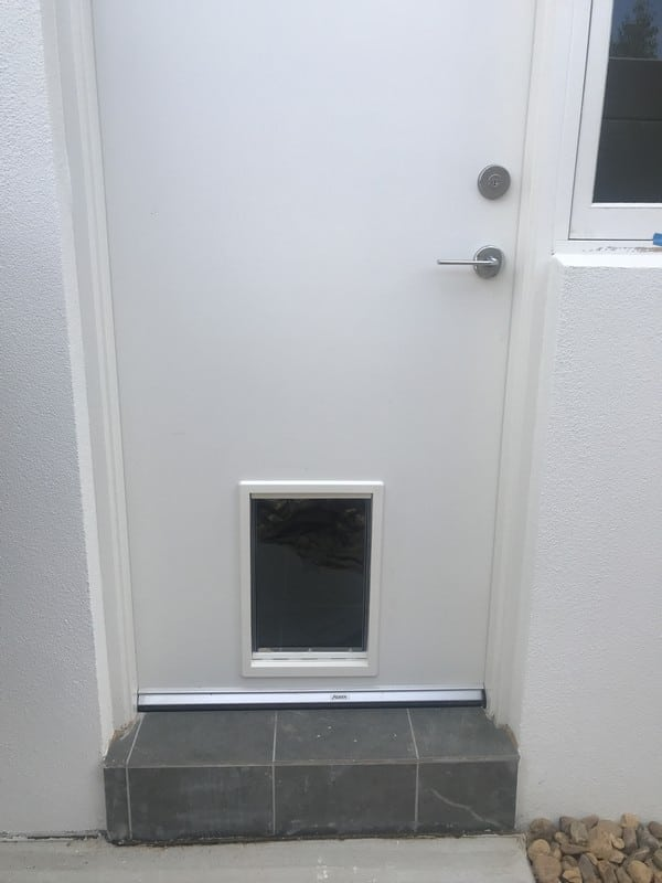 dog-door-timber-door (28)