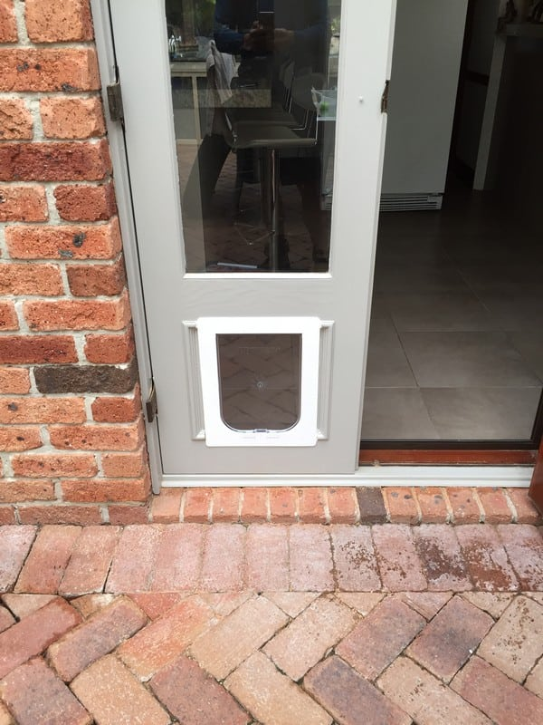dog-door-timber-door (47)