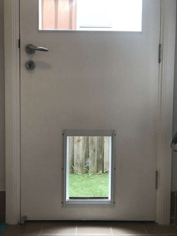 dog-door-timber-door (50)