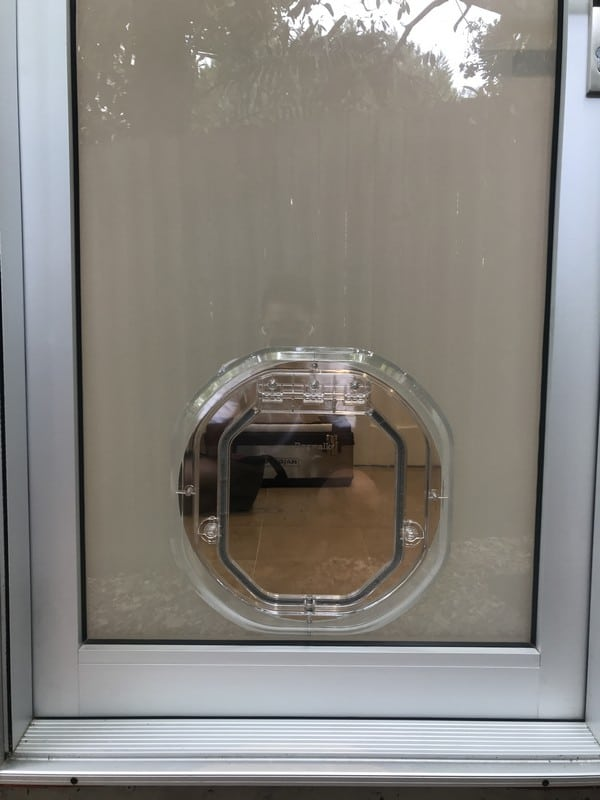 glass-door-dogdoor (25)