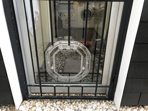 glass-door-dogdoor (26)
