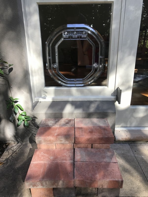 glass-door-dogdoor (34)