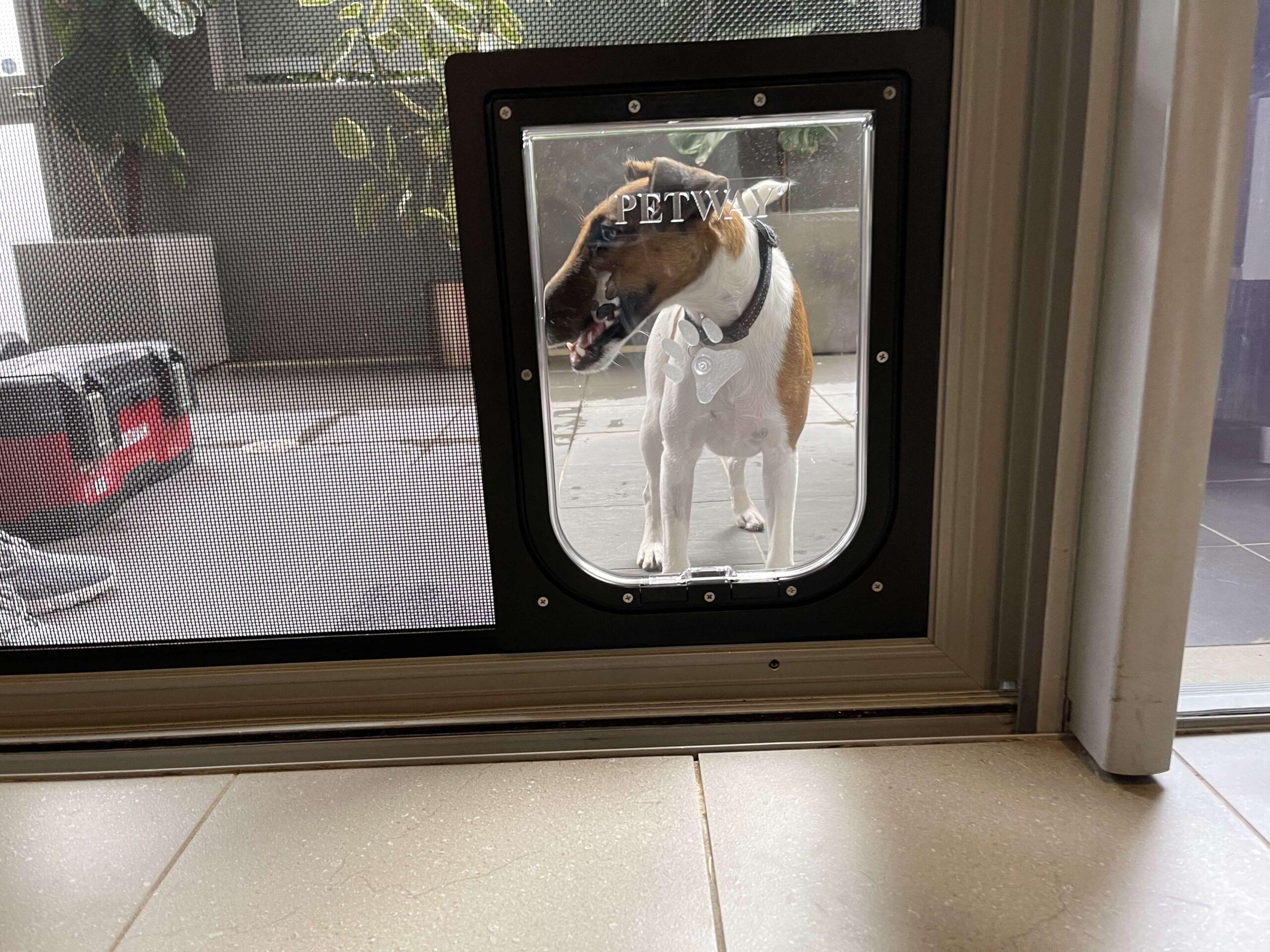 screen-door (5)
